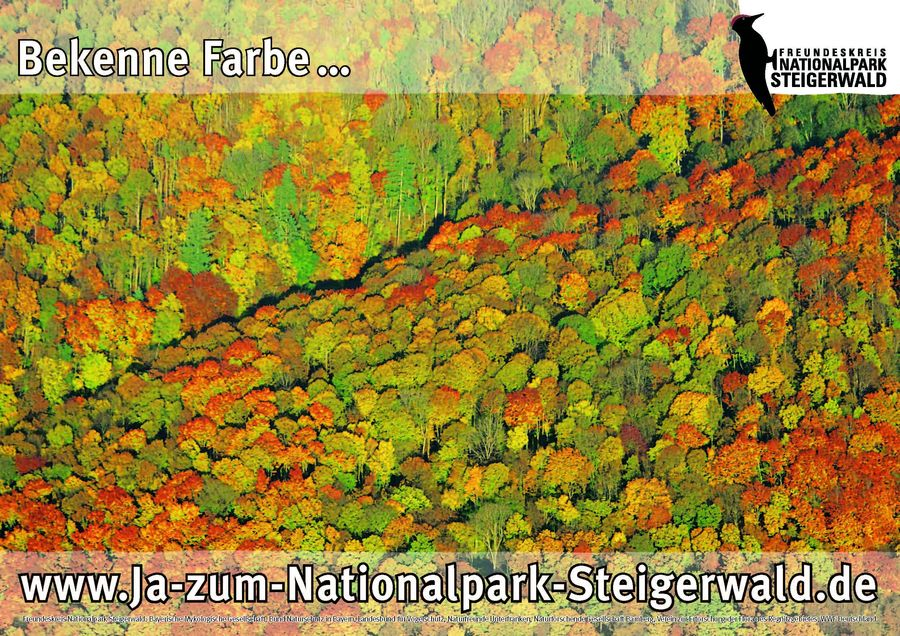 Nationalpark Steigerwald